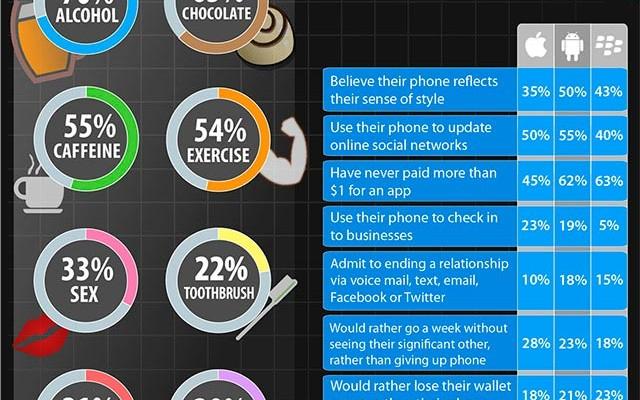 Final-Mobile-Survey-Infographic-medium-res